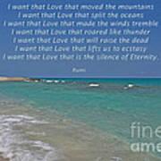 151- Rumi Poster
