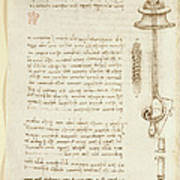 Drawings By Leonardo Da Vinci Poster