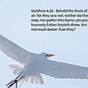 Soaring Heron Poster