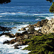 17 Mile Drive Detail Poster