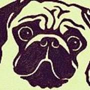 Pug The Dog Poster