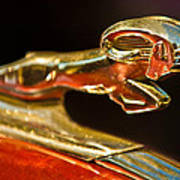 1939 Dodge Business Coupe V8 Hood Ornament Poster by Jill Reger