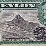 1946 Ceylon - Sri Lanka - Stamp Poster