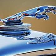 1948 Jaguar 2.5 Litre Drophead Coupe Hood Ornament Poster