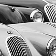1950 Jaguar Xk120 Roadster Grille 2 Poster by Jill Reger