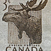 1953 Canada Moose Stamp Poster