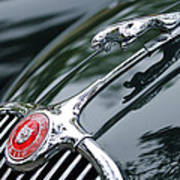Jaguar Xk 150 Hood Ornament  Poster
