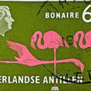 1958 Netherlands Antilles Flamingoes Stamp - Curacao Postmark Poster