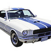 1965 Gt350 Mustang Muscle Car Poster