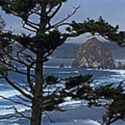 Along The Oregon Coast Poster