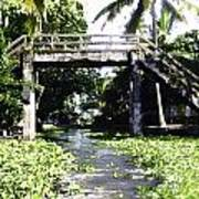 An Old Stone Bridge Over A Canal In Alleppey Poster