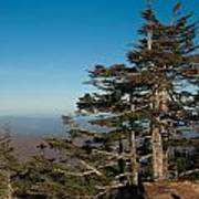 Appalachian Mountains From Mount Mitchell  Poster