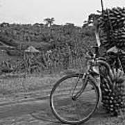 Banana Bike Poster