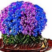 Beautiful Arrangement Of Flowers Poster