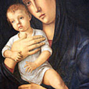Bellini's Madonna And Child Poster