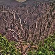 Black Canyon Of The Gunnison Poster