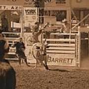 Bull Rider Poster
