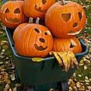 Carved Pumpkins In A Wheelbarrow Poster