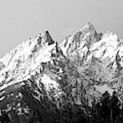 Cathedral Group Grand Teton National Poster