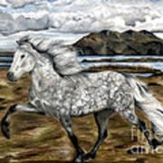 Charismatic Icelandic Horse Poster