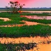 Chobe River Sunset Poster