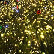 Christmas Tree Ornaments Faneuil Hall Tree Boston Poster
