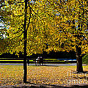 Colorful Fall Autumn Park Poster