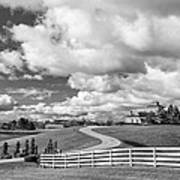Country Living Bw Poster