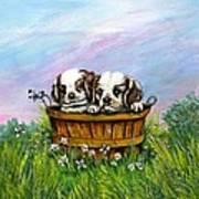Curious Little Buddies.  Poster