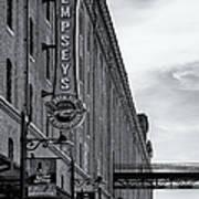 Dempseys Brew Pub Poster