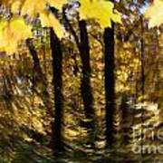 Fall Abstract Poster