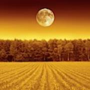 Full Moon Over A Field Poster