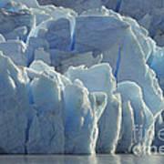 Grey Glacier In Chilean National Park Poster