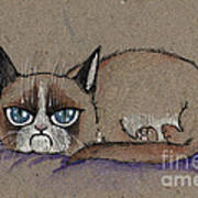 Grumpy Cat Having Some Rest Poster