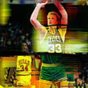 Larry Bird Poster