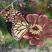 Monarch- Butterfly Mixed Media Photo Composite Poster