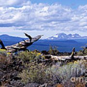 Newberry Lava Beds Poster