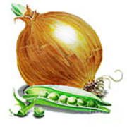 Onion And Peas Poster