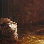 Otter Curiosity Poster