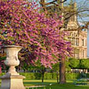 Paris Springtime Poster