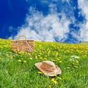 Rolling Dandelion Meadow Poster