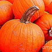 Small Pumpkins Poster