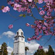 Spring Blossom And Memorial Clock Poster