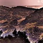 Starry Night Landscape Poster