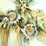 Sunflowers V Poster