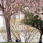 Spring Break Poster