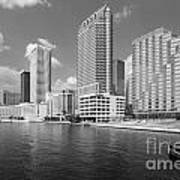 Tampa Skyline From Hillsborough River Poster