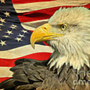 The American Eagle Poster