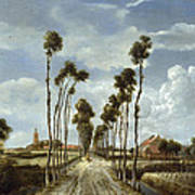 The Avenue At Middelharnis Poster