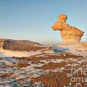 The Rabbit Stone Formation In White Desert Poster